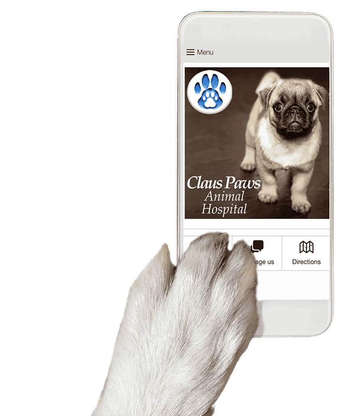 Dog paw holding mobile app